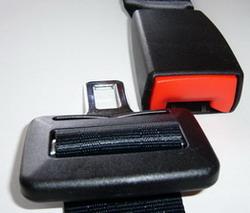 Seat Belt Division
